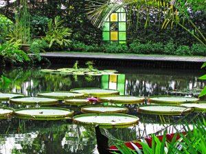 Flower Garden In Penang